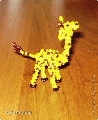 Жирафик фото 1