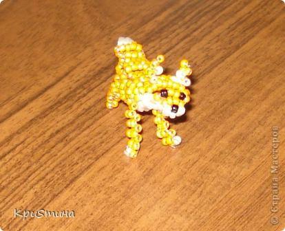 Жирафик фото 5