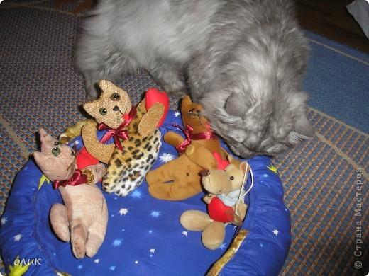 Кухонный кот, ваш помощник, или наоборот проказник! фото 6