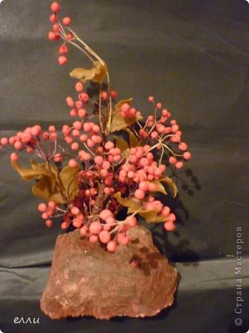 Поделка изделие Праздник осени Лепка КАЛИНА Фарфор холодный фото 1.
