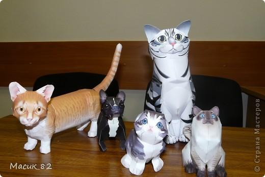 Мои бумажные животные фото 2