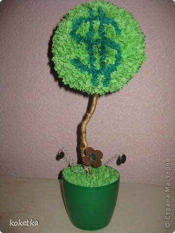 Вот и у меня есть денежное деревце (правда потом я подарю его на именины брату Николаю). фото 1