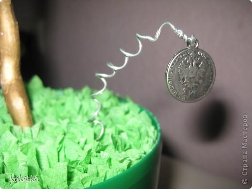 Вот и у меня есть денежное деревце (правда потом я подарю его на именины брату Николаю). фото 4