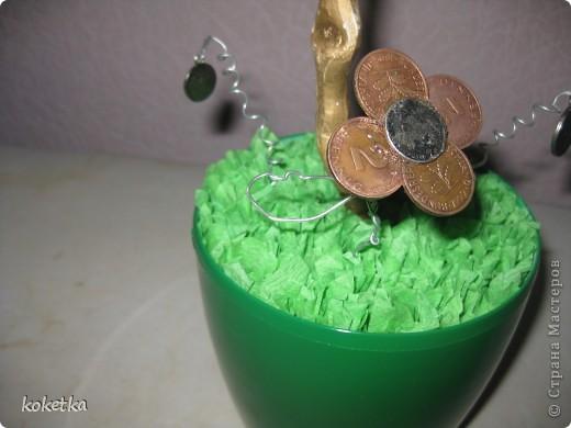 Вот и у меня есть денежное деревце (правда потом я подарю его на именины брату Николаю). фото 3
