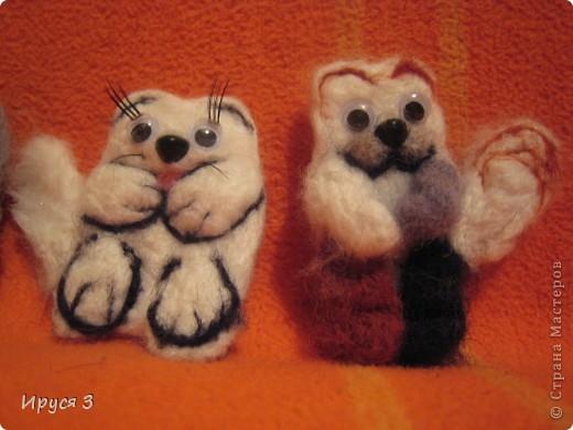 Черепаховый котик , смешарик медвежонок и песец фото 4