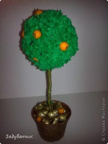 Первое деревце доченьки фото 1