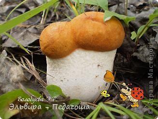 За МК по изготовлению такого грибочка благодарю п4елка_Зоя  https://stranamasterov.ru/node/16256?c=favorite_c фото 2