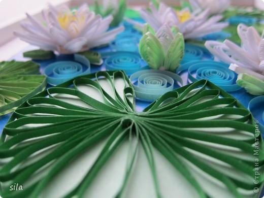 снова лилии фото 10