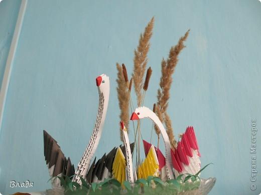 Семейство лебедей от Илинбаевых:мамы Алёны и дочек Катюши и Полины. фото 1