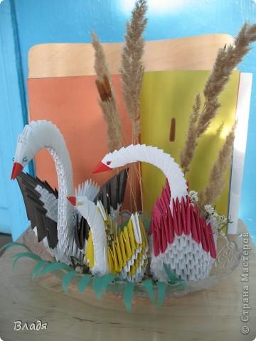 Семейство лебедей от Илинбаевых:мамы Алёны и дочек Катюши и Полины. фото 2