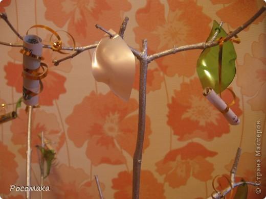 Вот такое подарок приготовила от своего имени и друзей в день рождение любимой подруге! Я идею навеяла Романова Ирина Александровна http://stranamasterov.ru/user/46560. Большое спасибо за идею! фото 5