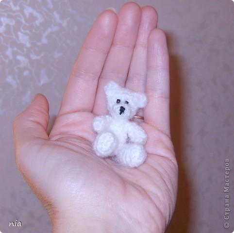 Мишки-малышки фото 2