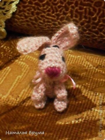 Кроха-Кроля фото 2