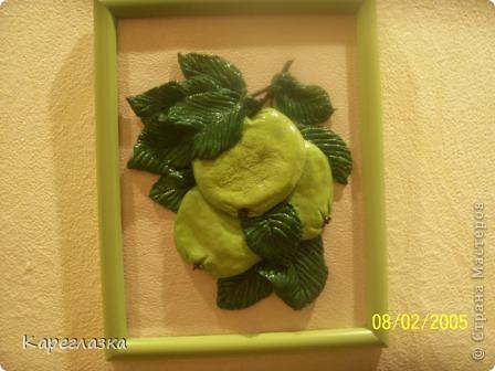Яблоки, почему то стали шершавые(((( фото 1