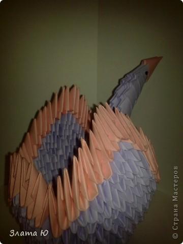 Лебедь (!Первая работа  в технике модульного оригами!) фото 3
