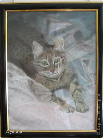 Это мой первый рисунок пастелью. Рисовала по самоучителю. фото 2