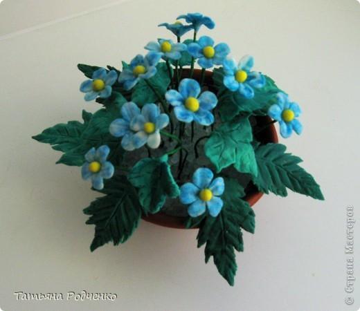 """Вот такие скромные цветочки """"выросли"""" у меня. Качество, извините, плохое (батарейки разрядились). фото 3"""