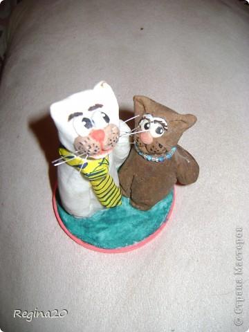 """Котики """"муж и жена"""""""