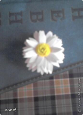 Мой первый цветок =)