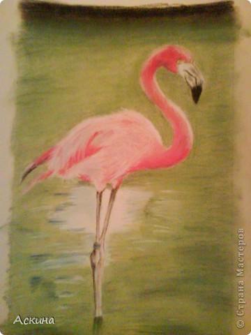 Это мой первый рисунок пастелью. Рисовала по самоучителю. фото 3