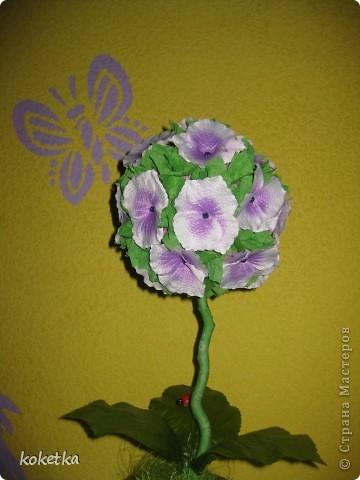 Деревце - цветок фото 1