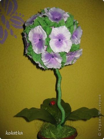 Деревце - цветок фото 2