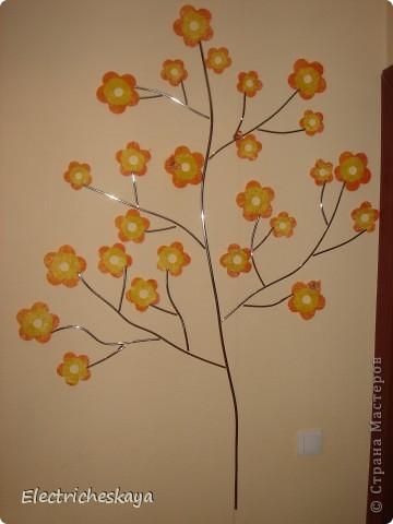 Выросло такое деревце фото 1