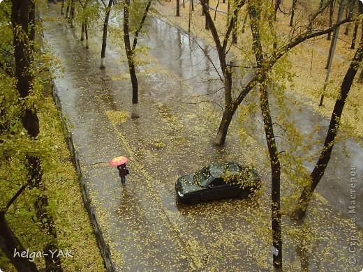 Эти снимки сделаны в разные годы. Река Кинель в Самарской области. фото 20