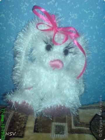 Мой новый заяц - Степан фото 4