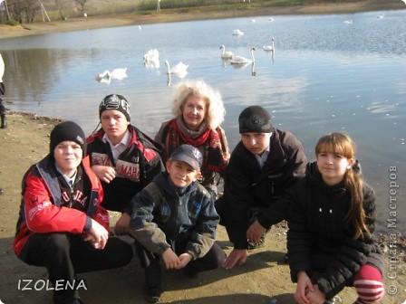 Каждый год эти царственные птицы выбирают Кубань для зимовки. Эти лебеди зимуют на реке Кубань и на нашем водохранилище. фото 12