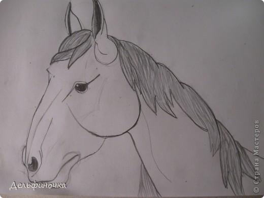 Доброго времени суток!  Я очень люблю лошадей. Ездить, к сожалению, сейчас не получается, поэтому я их рисую. Хочу поделиться ссылками на мастер-классы, с помощью которых я рисую лошадей, и показать пару рисунков. фото 1