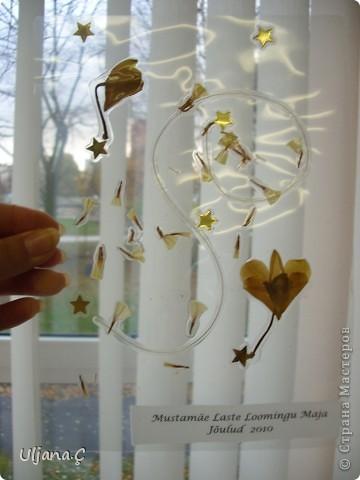 Витражи с помощью ламинатора и сухих цветов  фото 5