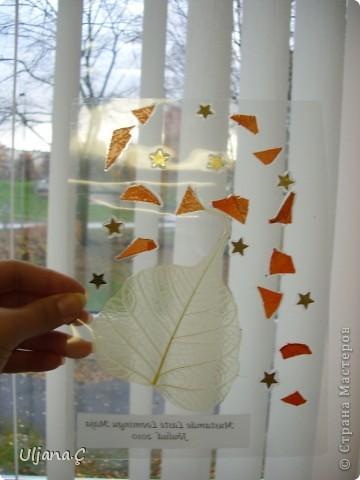 Витражи с помощью ламинатора и сухих цветов  фото 6