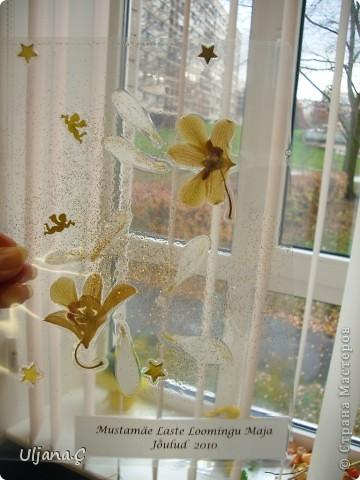 Витражи с помощью ламинатора и сухих цветов  фото 8