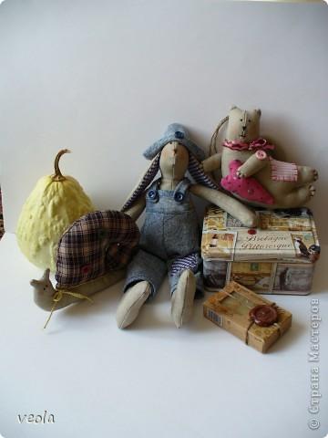 Кролик фото 5