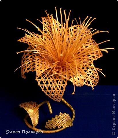 Соломенные бабочки-цветочки.  Ещё одно направление моего соломоплетельного творчества. фото 3