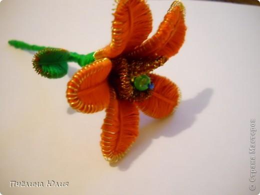 Цветочки. фото 4