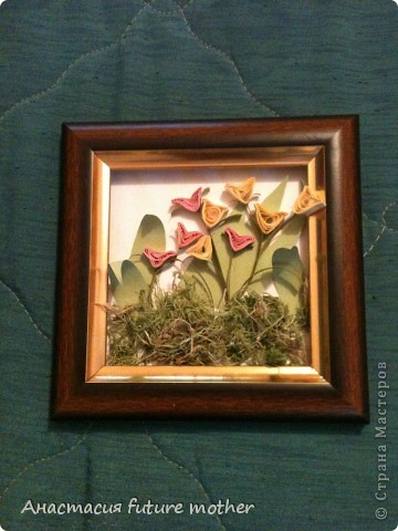 Тюльпаны для мамули