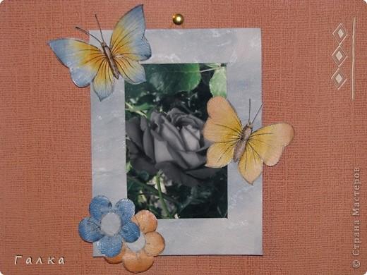 Рамочка для фоточки-основа-обои,декор-скорлупки от фисташек+цветные карамельки ))) фото 12
