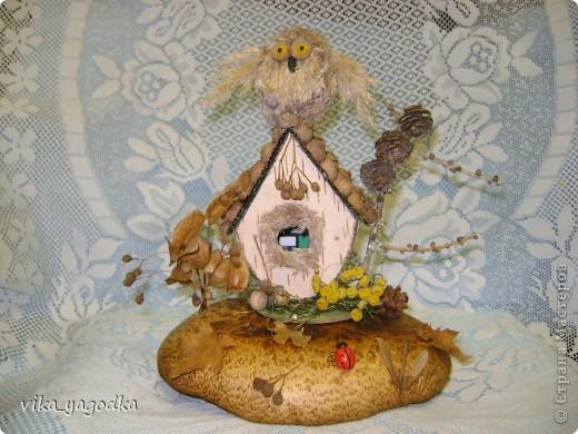 Дом совуньи!!! фото 1