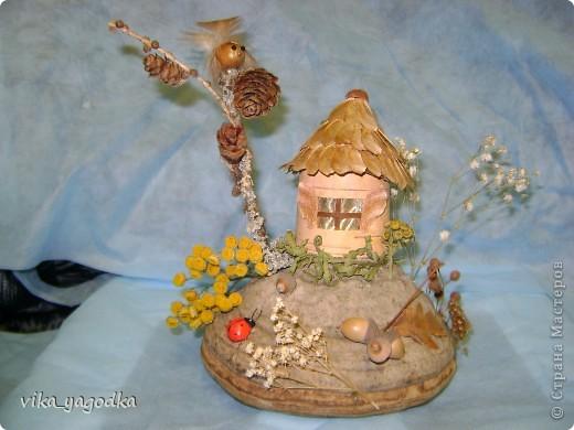 Дом совуньи!!! фото 3