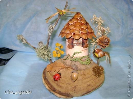 Дом совуньи!!! фото 5