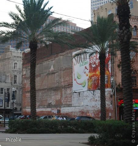 Новый Орлеан,Луизиана. Часть 1-ая фото 7