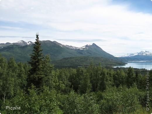 Аляска во всей красе,однако :) Часть 2-ая фото 7