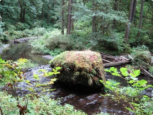 Штат Орегон.Часть 1-ая фото 9