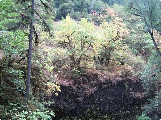 Штат Орегон.Часть 2-ая фото 8