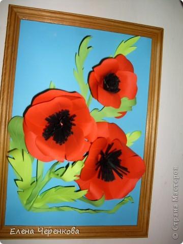 Мак - мой любимый цветок, поэтому вы неоднократно сможете увидеть его в моих работах... фото 2
