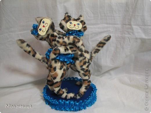 Танцуюшие кошки