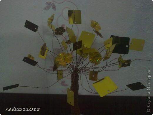 Золотое дерево  фото 3