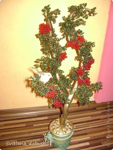 """Бісерне дерево (на дерев""""яних гілках,пофарбованих золотом,загіпсоване в горшок,який декорований камінцями) фото 1"""